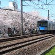 Spring_008