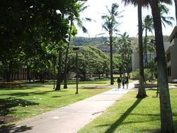 Hawaii1_002