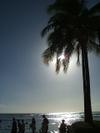 Waikiki_2_007